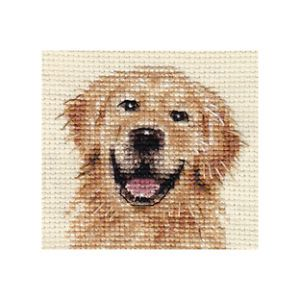 Golden Retriever Dog Complete Cross Stitch Kit