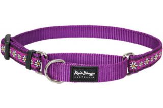 Red Dingo Martingale Dog Collar in Daisy Chain Design Semi Choke Dog Collar