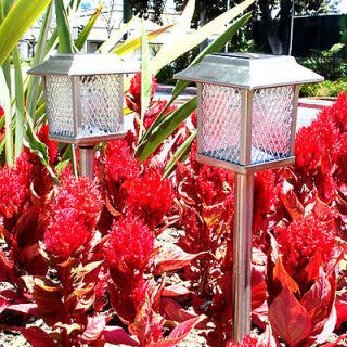 Outdoor Stainless Steel Square Solar Landscape Light