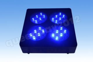 144W 2014 New CREE LED Aquarium Tank Light Lamp for LPS SPS Coral Reef Fish Grow