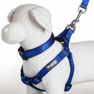 Blueberrypet Royal Blue Designer Fashion Nylon Pet Puppy Dog Harness Large