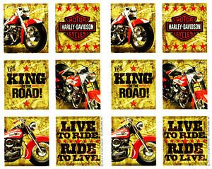 2 Sheets Harley Davidson Motorcycle Scrapbook Stickers