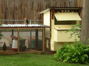 Low Cost Backyard Mini Chicken Coop Building Plans Book