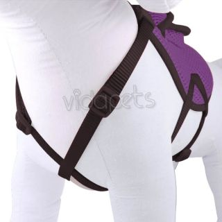 "14 18"" Purple Backpack Dog Harness Adjustable Comfort Wrap Pet Collar Small"