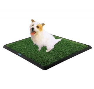 New Portable Indoor Training Toilet Pet Potty Grass Puppy Dog Trainer Mat 30""