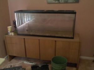 55 Gallon Tank with Stand and 20 Gallon Without Stand