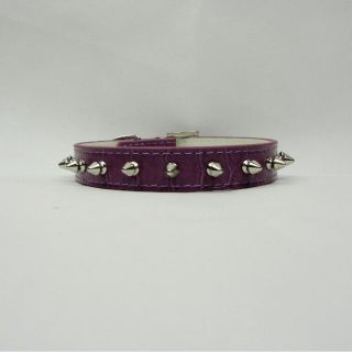 5 Colors Dog Cat Collars PU Leather Spiked Studded Collar Sz XS s M L New