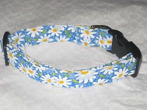 Blue Daisy Dog Collars Leashes New