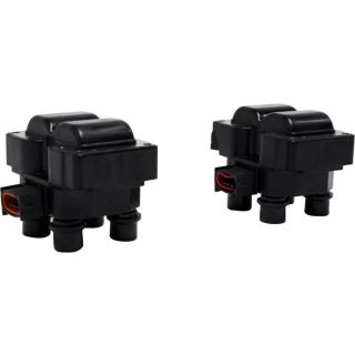 New Ignition Coil Set of 2 Pickup E150 Van E250 F150 Truck F250 Mark Ford Pair