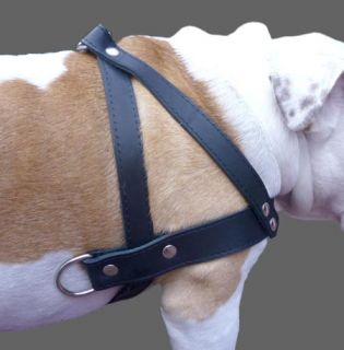"Pulling Real Leather Dog Harness 1 5"" Wide Brown 31"" 35"" Size Pitbull Rottweiler"