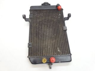 2005 Yamaha Raptor 660 Radiator with Sensor