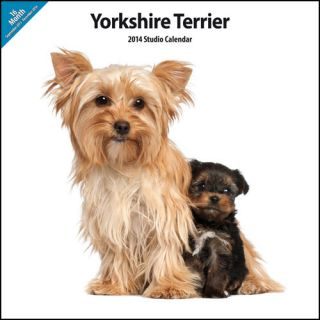 Yorkshire Terrier 2014 Wall Calendar