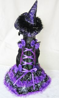 Halloween Purple Witch with Spider Webs Lighted Pet Dog Costume