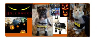 Halloween Batman Pet Dog Costume Size Small Medium