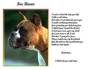 Boxer Pet Dog Memorial Personalized w Name Until We Meet Again Poem Unique Gift