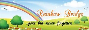 Rainbow Bridge Poem Bookmark Keepsake Card Pet Cat Dog Bereavement Memorial