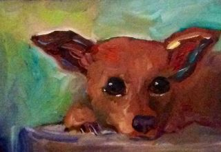 Original Oil Painting Carter Art Card ACEO Dog Puppy Chihuahua