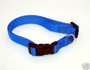"New 5 8"" Wide Nylon Dog Collar Blue Size Small 11"" 16"""
