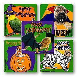 15 Animals in Costumes Halloween Stickers Dog Cat Bird Lizard Party Goody Favors