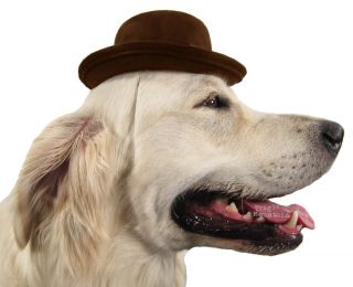 Small Bowler Hat Costume Blocked Pet Dog Elastic Strap Brown Western Kids Suede