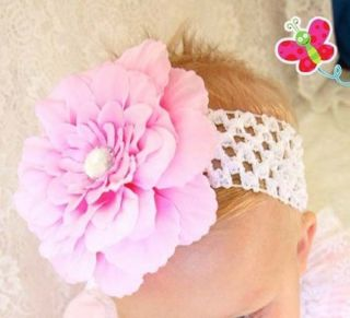 12pcs Peony Newborn Baby Girl Headband Hairband Hair Bow Flower Clip Headwear