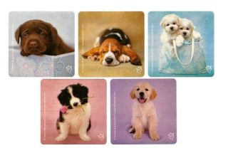 15 Rachael Hale Puppy Dog Stickers Animal Party Goody Bag Filler Favor Supply
