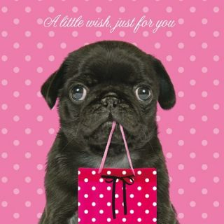 "Funny Pug Dog Birthday Card ""A Little Wish Just for You"" Cute Pet Humour Card"