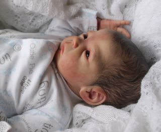 Beautiful Reborn Baby Boy Doll Chicklet Sam's Reborn Nursery Limited Ed