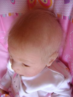 Beautiful Reborn Baby Doll Was Lillebror by Sabine Altenkrich Limited Ed 257 600