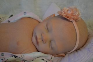 Reborn Newborn Baby Girl Tegan by Laura Lee Eagles Precious Sleeping Baby