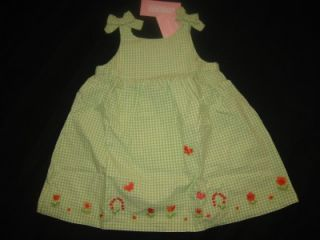 Gymboree Butterfly Spring Green Gingham Dress 18 24