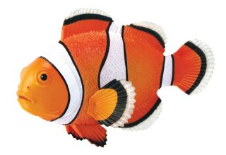 Clownfish Puzzle 4D Vision Kit 26543 Tedco Science Toys