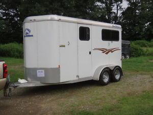 2010 Blue Ribbon 2 Horse Straight Load All Aluminum Trailer