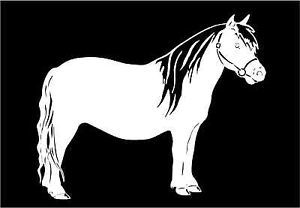 Pony Miniature Horse Decal Trailer Vinyl Car Truck Window Sticker Graphic