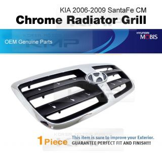 Genuine Parts Chrome Radiator Grill Molding Fit Hyundai 06 09 Santa FE Cm