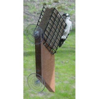 Songbird Essentials Suet Window Feeder   Bird Feeders