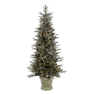 6.5 ft. Potted Frosted Emily Fir Pre lit LED Christmas Tree   Christmas Trees