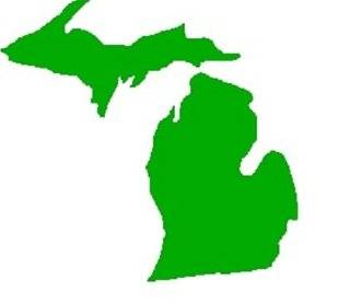 Michigan Map 3 inch Vinyl Decal Sticker LIME GREEN