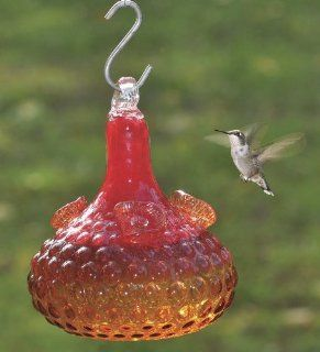 Orange And Red Glass Hummingbird Feeder  Patio, Lawn & Garden